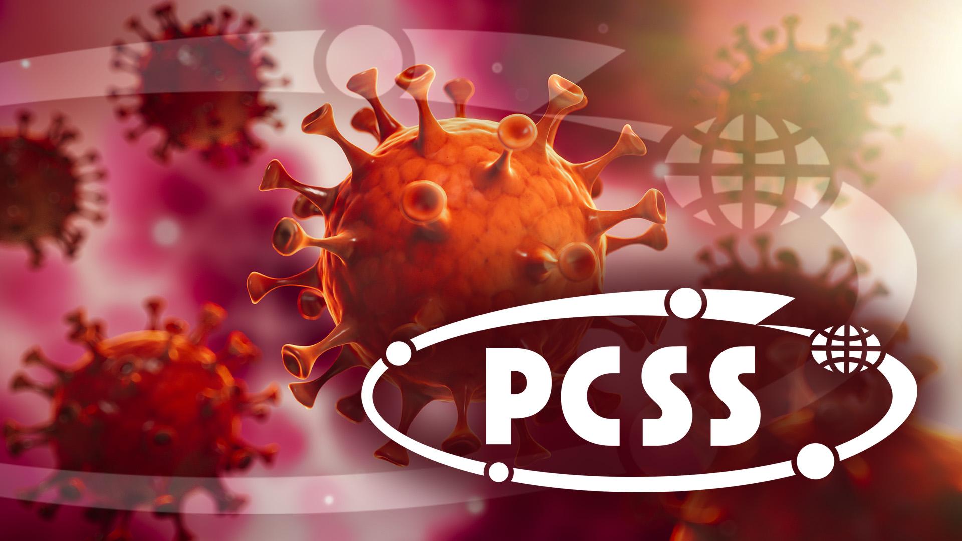 Aktywność PCSS w okresie pandemii koronawirusa i związanej z nią masowej kwarantanny