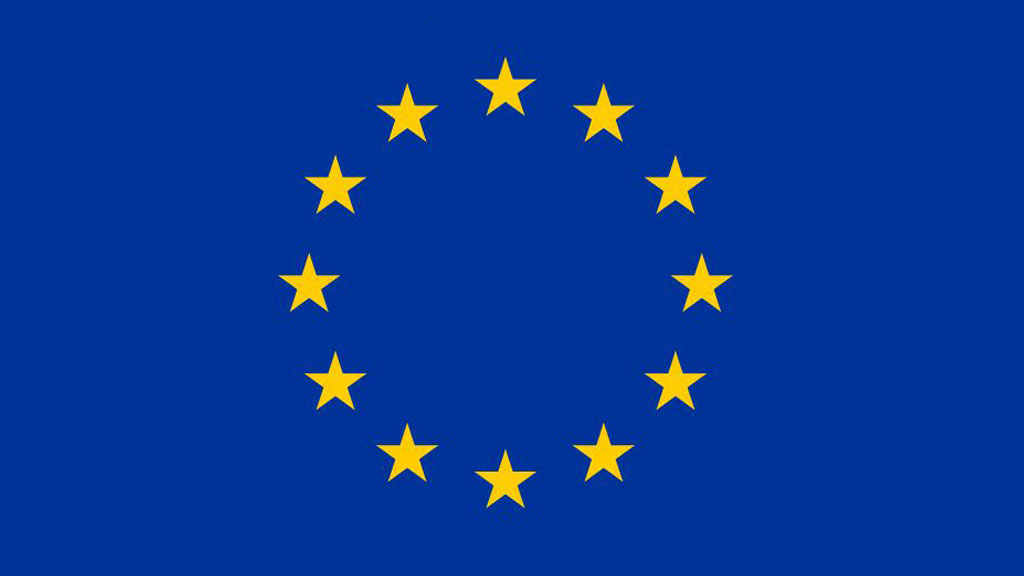 Zastosowanie zaleceń Komisji Europejskiej odnośnie digitalizacji […] – Raport 2010 dla Polski